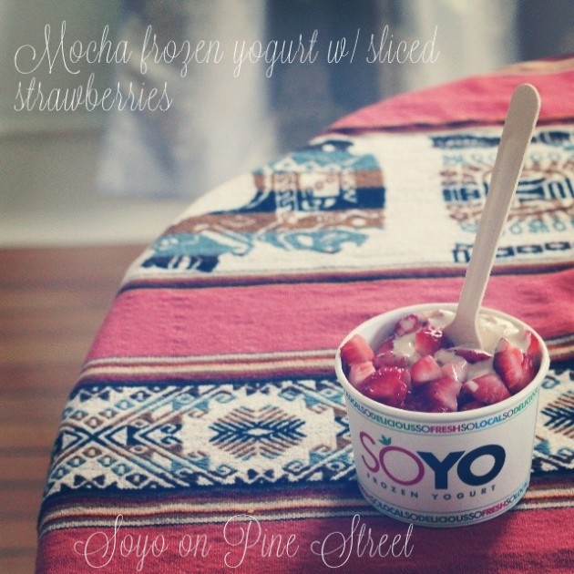 Frozen Yogurt//Soyo
