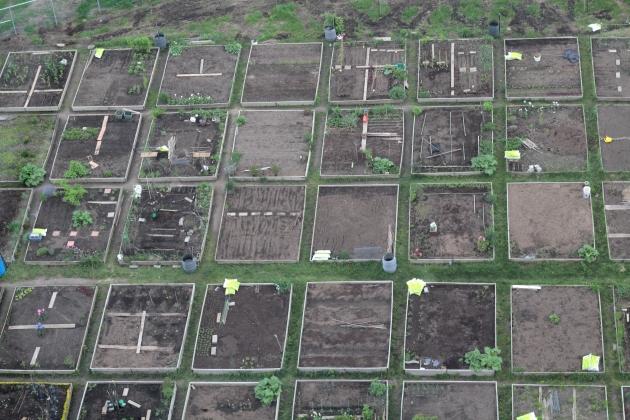 Montreal garden plots